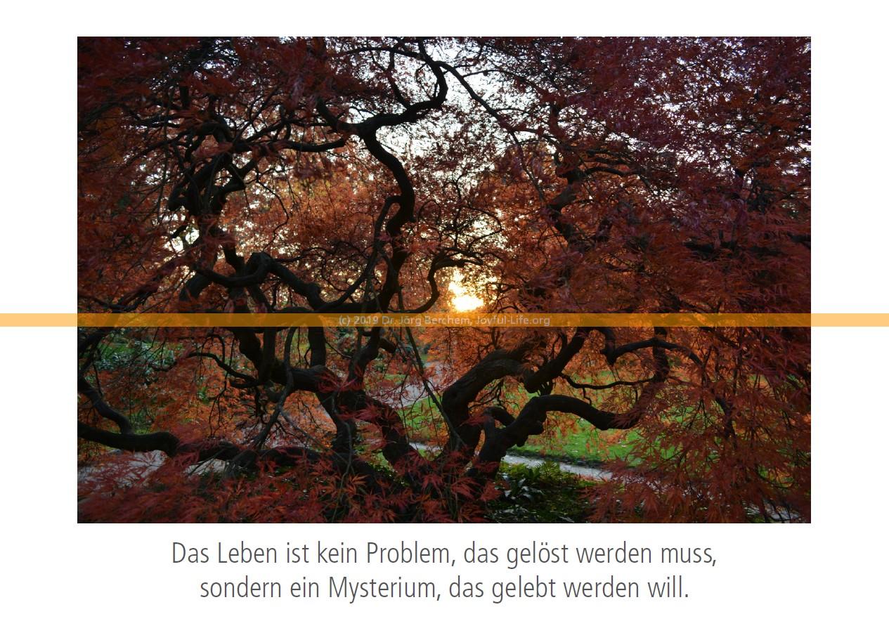 "Postkarte ""Mysterium"""
