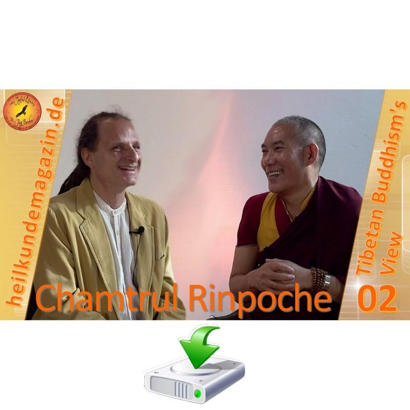 Chamtrul Rinpoche über Leiden und Heilung (PDF)